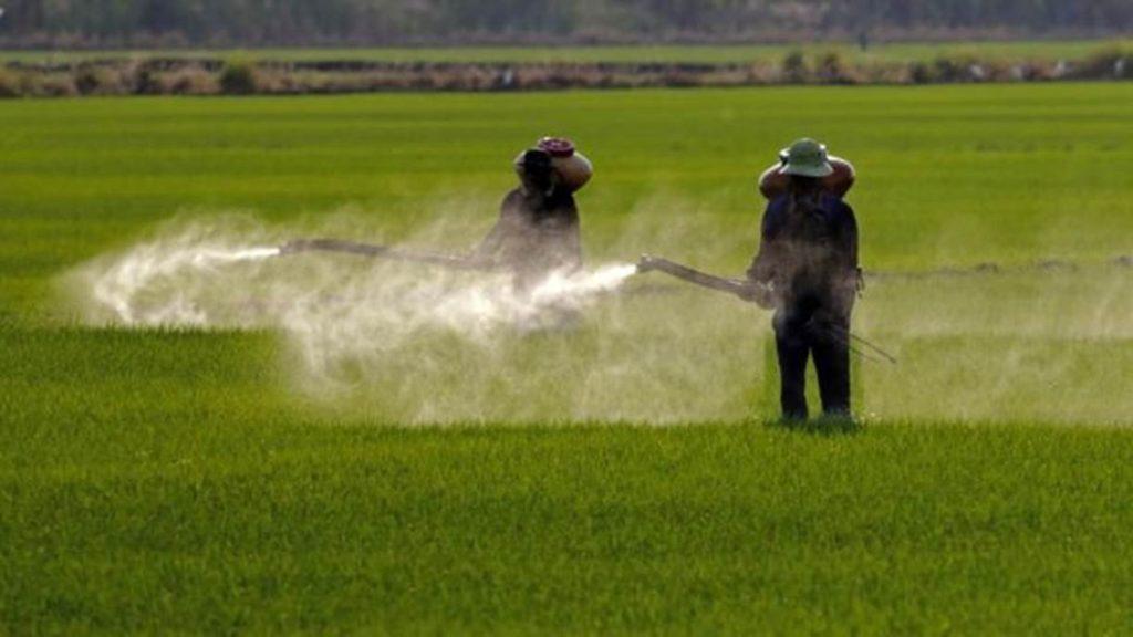 Governo autoriza mais 57 agrotóxicos; total de registros em 2019 chega a 382