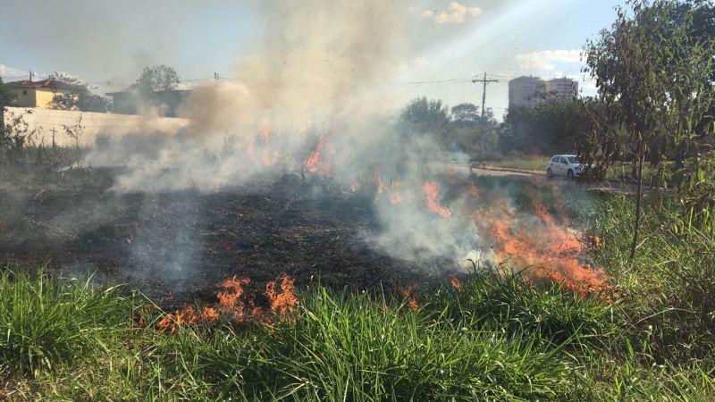 MPPA pede fiscalização e controle de lotes urbanos para evitar queimadas