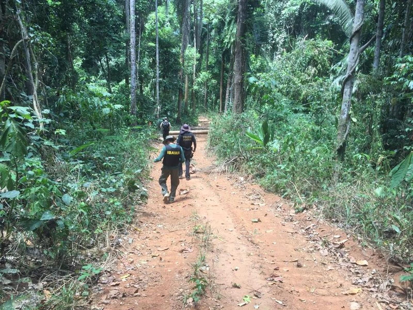 Polícia Federal identifica áreas de desmatamento e grilagem em terras indígenas de Altamira