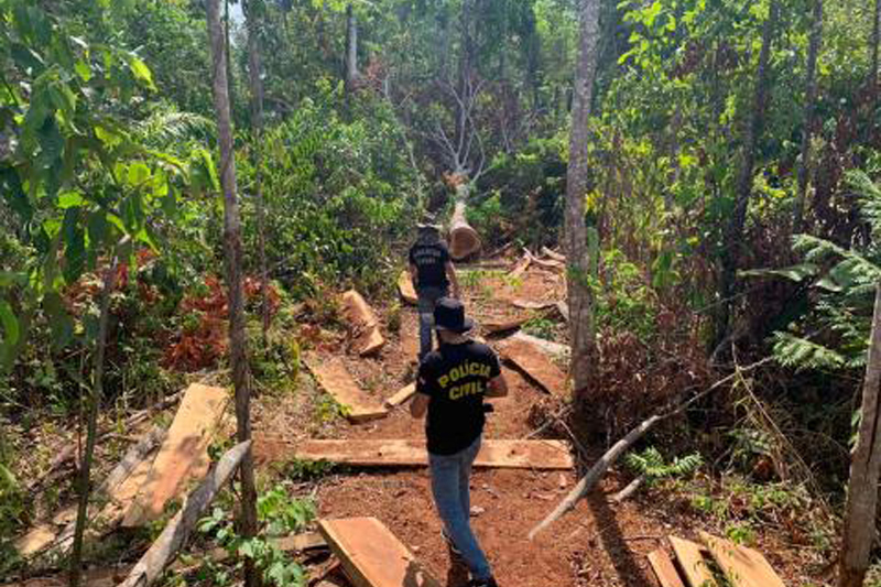 Polícia indicia fazendeiro por desmatamento ilegal