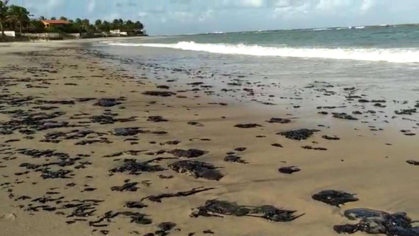 Resultado de imagem para mancha de óleo nordeste