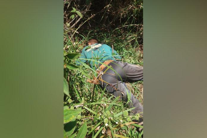 Tirador de açaí é morto com um tiro na zona rural de Nova Ipixuna