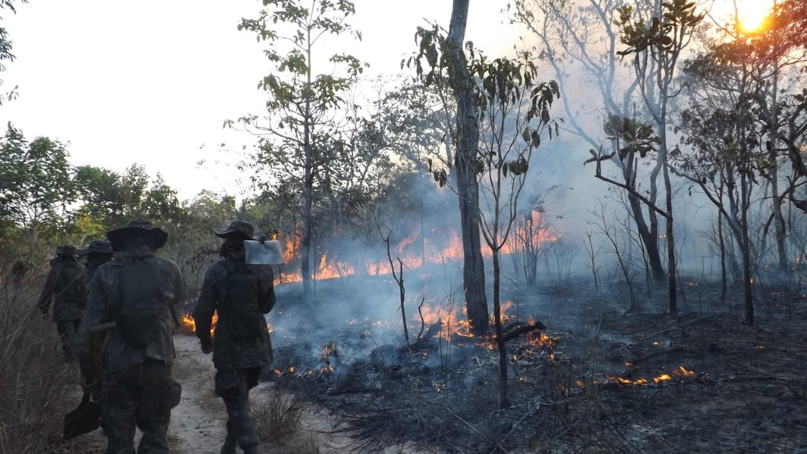 'Incêndio na APA Alter do Chão pode ter sido causado por ação humana