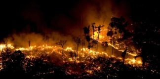 São Félix do Xingu lidera queimadas no começo de setembro