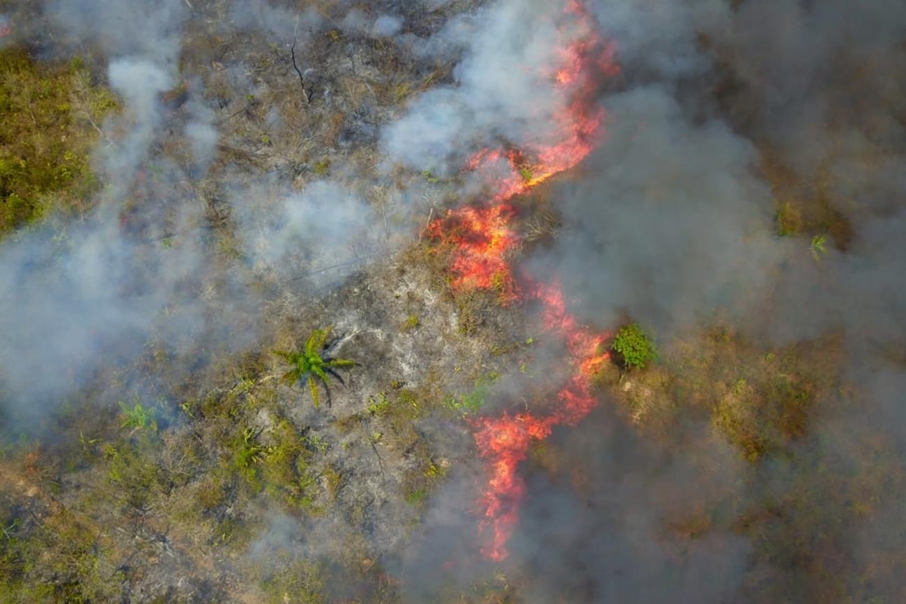 Operação Fênix continua trabalhando no combate a queimadas no Pará