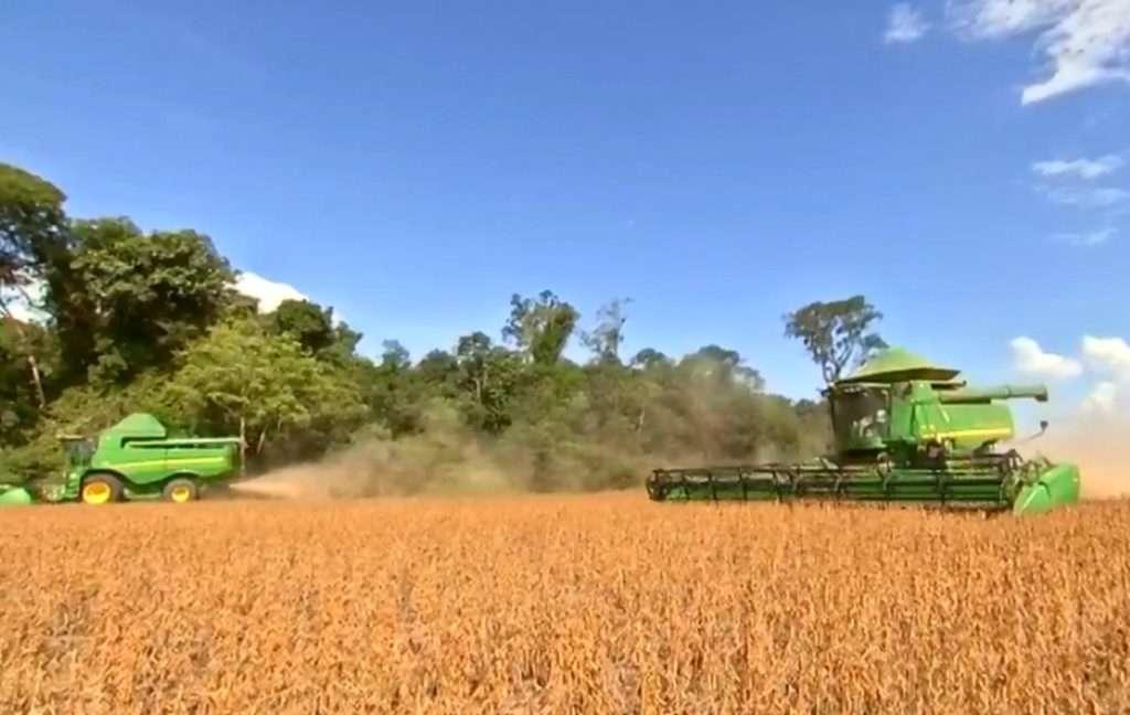 Cresce emprego formal no setor da agropecuária no Pará, diz Dieese